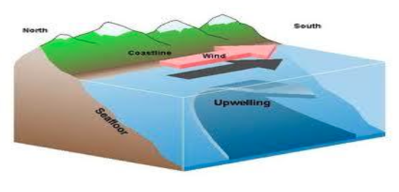 Graphic representation of upwelling from NOAA